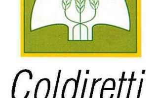 Economia: coldiretti  agricoltura  canada  ceta