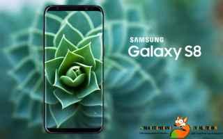 Cellulari: galaxy s8+  samsung galaxy s8+