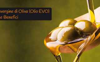 Alimentazione: olio extravergine oliva olio  olio evo