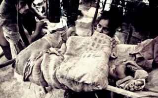 dal Mondo: birmania  rohingya  diritti umani