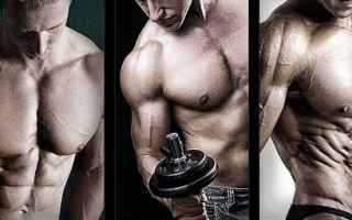 massa muscolare  dieta massa muscolare