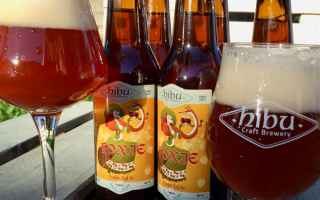 Gastronomia: birra  craftbeer  hibu  birra artigianal