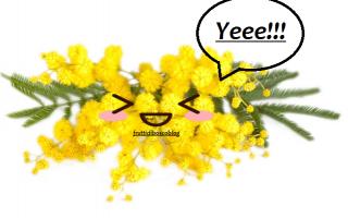 fiori  mimosa  esperimenti  giardinaggio