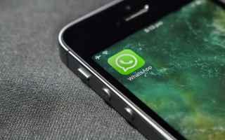Spiare whatsapp è tra le parole chiave più ricercata su internet. Questo vuol dire che esistono ta