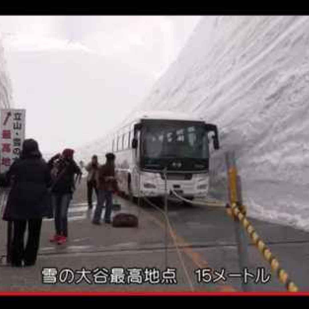 Un Viaggio Fantastico Nel Regno Della Neve Giapponese Giappone