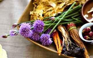 Salute: naturopatia  salute  benessere