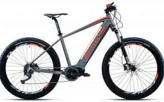 Ciclismo: bottecchia kripton  bottecchia  bicicletta  kripton