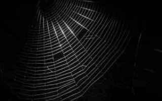 Internet: dark web  deep web
