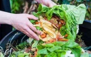 food sharing  spreco  roma  spreco cibo