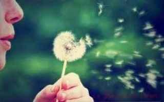 Salute: allergia  primavera
