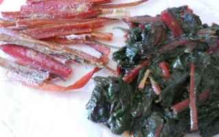 Alimentazione: alimentazione  salute  ricette