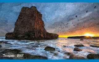 Cultura: divertimenti grafici  marina  oceano