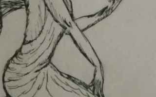 Arte: disegnare  tiger  shopping