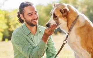 Animali: ANIMALI: Cani, cosa capiscono quando ci rivolgiamo a loro