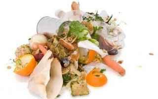 amia amia verona spreco sprechi cibo