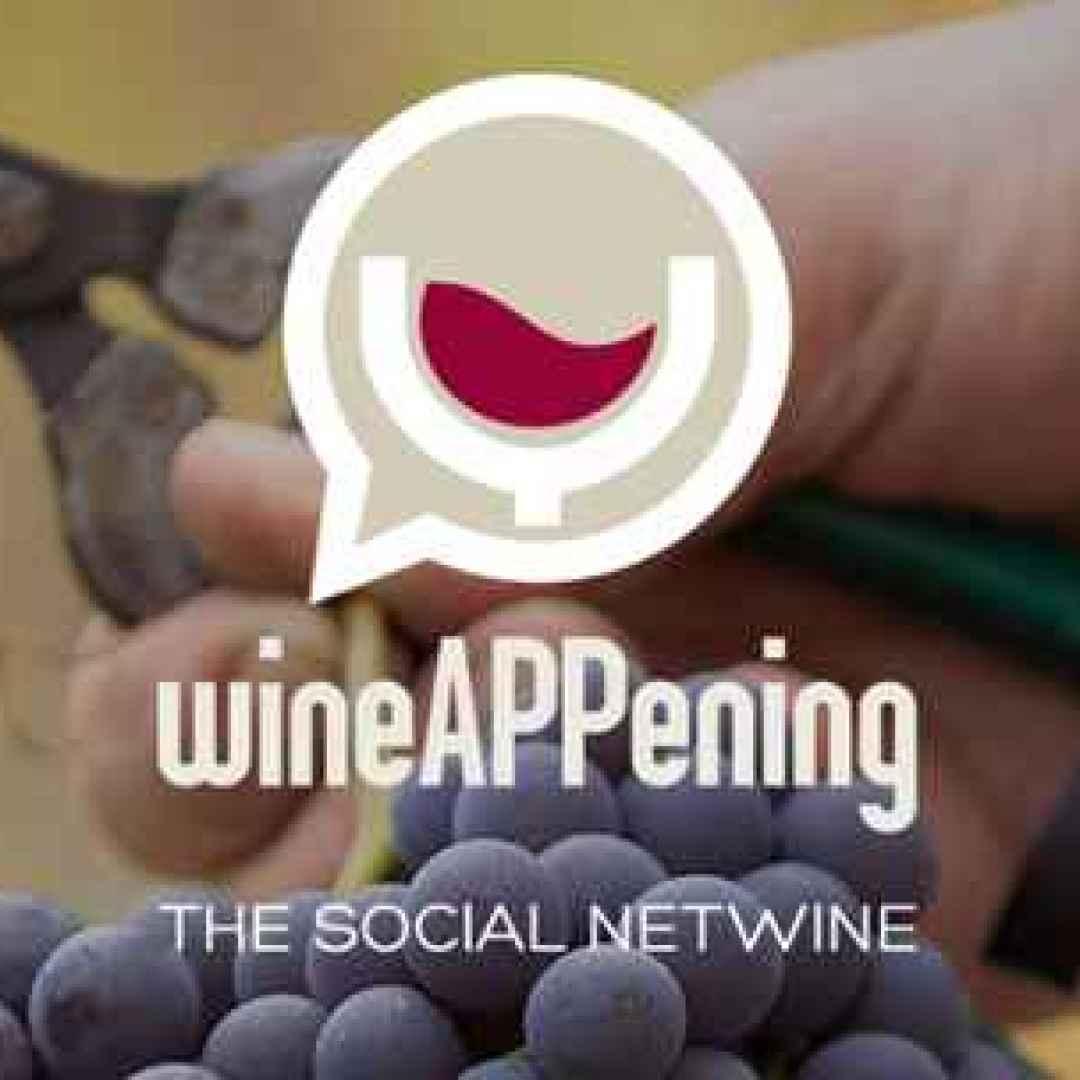 vino  wine  social  android  applicazione