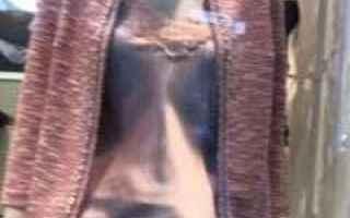 Moda: intimissimi donna cardigan canotta