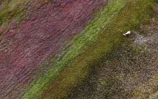 Arte: fotografia aerea  arte  colore
