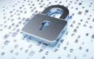 Sicurezza: privacy  trump  sicurezza