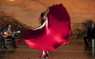 Viaggi: viaggi  flamenco