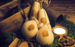 Ricette: cibo  italia