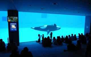 acquarium fukuoka waves japan