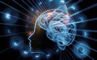 nootropi naturali  cervello. memoria