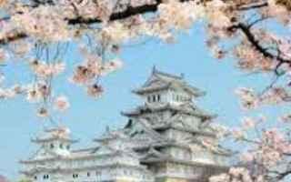 Sport Invernali: Mao Asada,figura principale dello sport giapponese, ha annunciato il suo ritiro