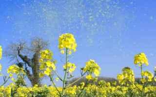 Salute: allergie primavera allergiestagionali