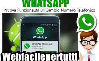 App: whatsapp app