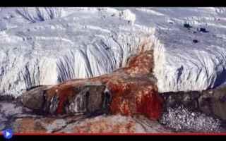 dal Mondo: scienza  ghiaccio  scoperte  antartide