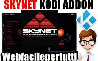 Software Video: skynet kodi addon