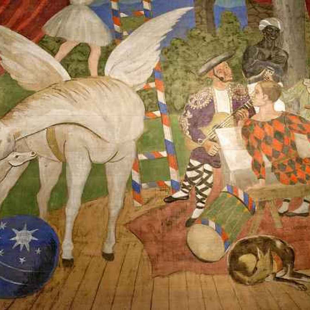 picasso  mostre  museo  arte  cultura