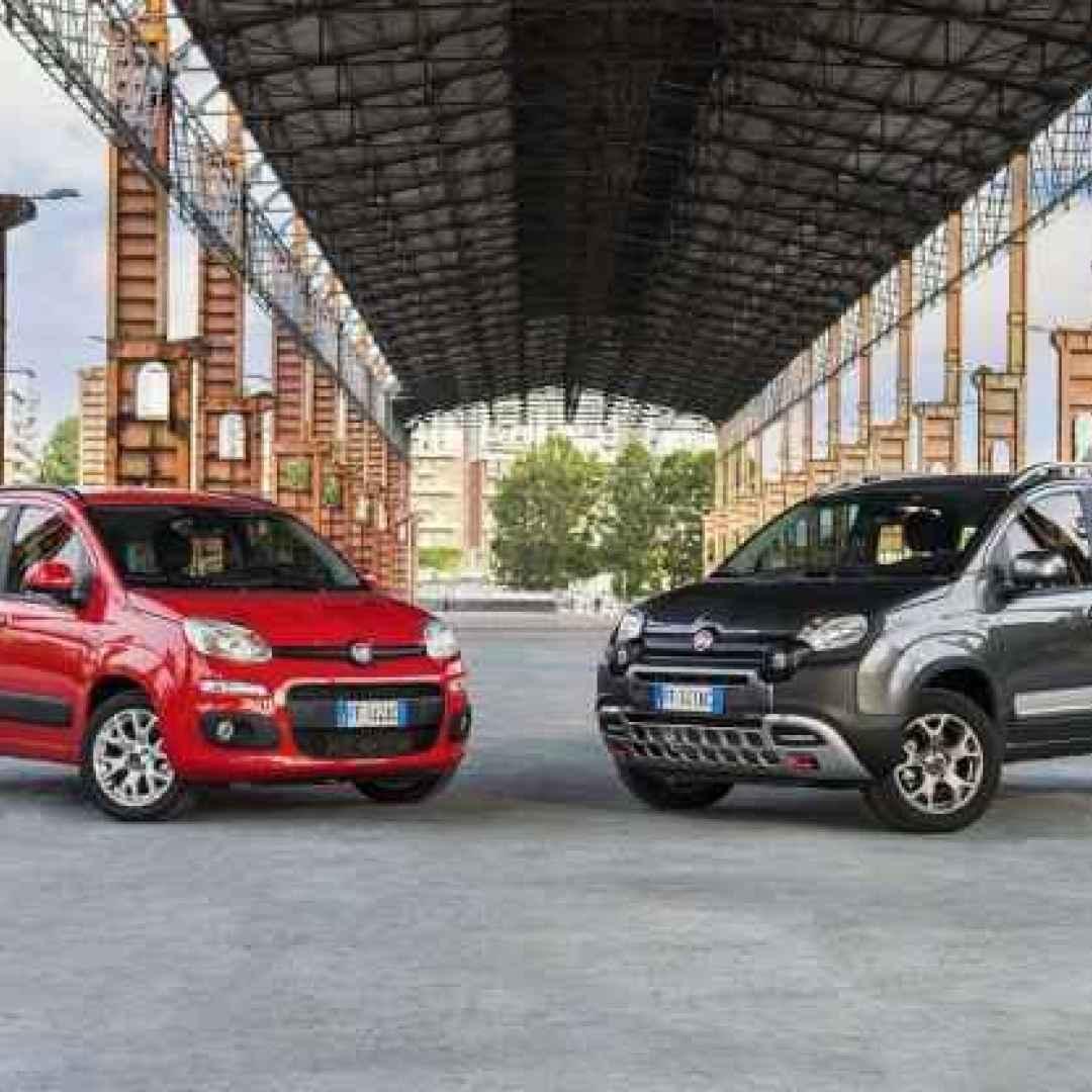 Fiat Punto Quale Scegliere on fiat linea, fiat seicento, fiat marea, fiat stilo, fiat multipla, fiat bravo, fiat 500l, fiat spider, fiat cars, fiat 500 abarth, fiat coupe, fiat panda, fiat cinquecento, fiat 500 turbo, fiat barchetta, fiat doblo, fiat ritmo, fiat x1/9,