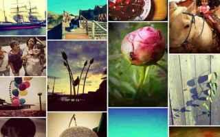 Foto online: web  immagini  internet  software