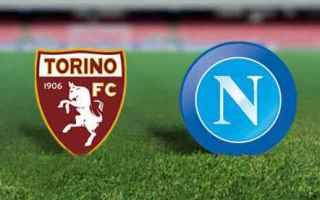 Serie A: torino  napoli