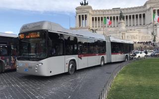 roma  filobus  trasporto pubblico