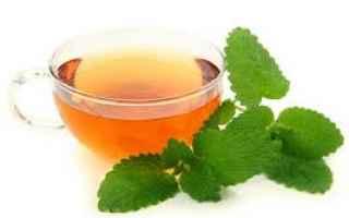 fitoterapia  rimedio  melissa
