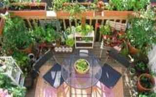 Giardinaggio: giardino  balcone  aromatiche