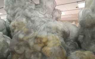 Arte: arte  scultura  biennale  arte  venezia