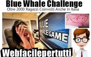Cronaca Nera: blue whale