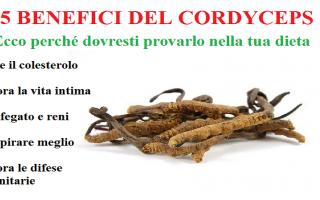 Sesso: cordyceps   viagra naturale