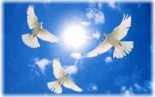 Religione: colombe  fatima  lisbona  madonna