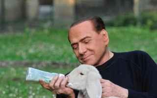 Politica: berlusconi  partito animalista