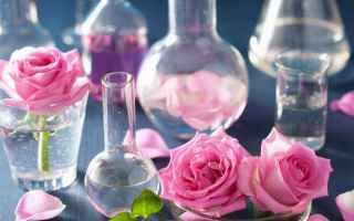 Bellezza: antiage  pelle  viso  smagliature  rughe  olio di rosa