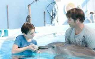 Cinema: delfino  film