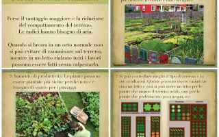 Giardinaggio: orto  letto rialzato  sinergico  bio