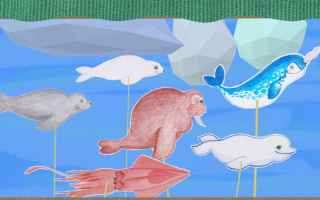 Video: cartoni animati  bambini  animali