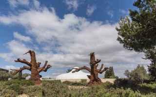 Arte: arte  scultura  installazione  mostra