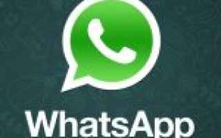 App: whatsapp  app  smartphone